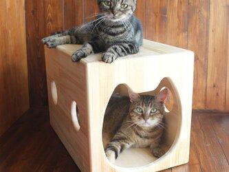 木製猫ハウス第3弾「猫ハウスフラット」・13.CATS.WORKSオリジナルの画像