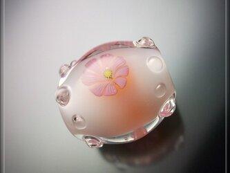 とんぼ玉 「 秋桜 」の画像