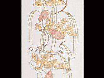 都の錦(桜)の画像