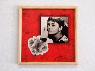 ピクチャートレイ オードリー  No.70 (送料無料) の画像