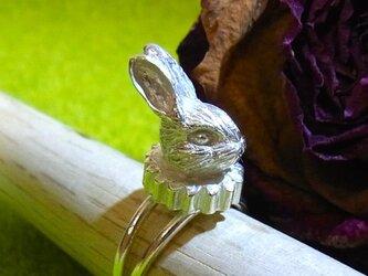 ヒダ襟ウサギのシルバーリング(SV925、フリーサイズ)の画像