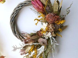 Autumn Dryflower wreath Ⅱの画像