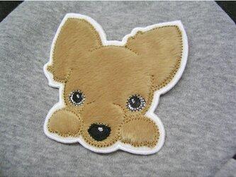 ★ちわわ★アップリケ刺しゅう★犬ワッペン★フォーンの画像