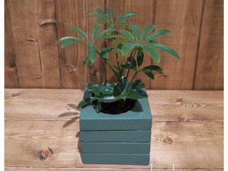 【ケーバブー】植木鉢 鉢 観葉植物 インテリア 小物入れ 雑貨の画像