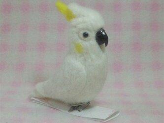 コバタン mini♪☆選べる2タイプ☆ クリップ付ブローチorマグネット 羊毛フェルトの画像
