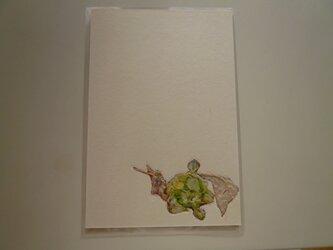 フキノトウ(ポストカード)の画像
