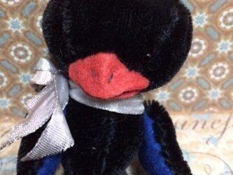 黒鳥のオディールの画像