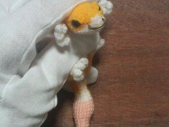 気分屋編み雑貨*ミニトカゲ*の画像