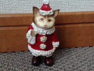猫のサンタの画像