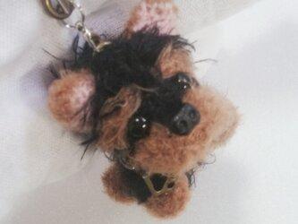 気分屋編み雑貨【ヨーキー犬】の画像