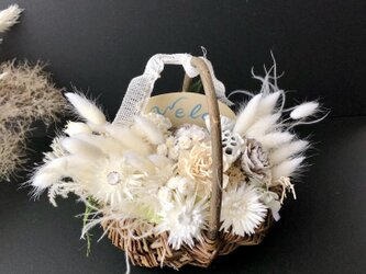 White basket Dryflowerの画像