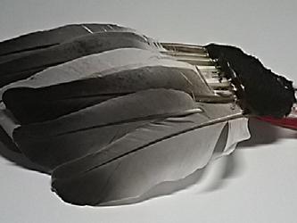 文房具・羽毛ハケNO11の画像