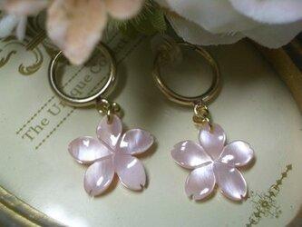 桜フープタイプイヤリングの画像