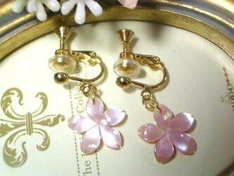 桜ねじバネ式タイプイヤリングの画像