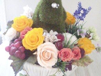 うさぎちゃん in 花畑 直立の画像