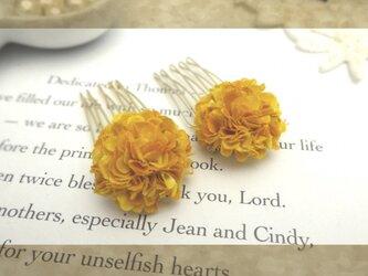 petal コームaの画像