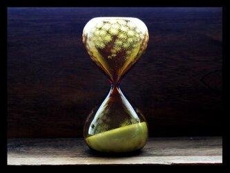 砂時計*M--ミモザの画像