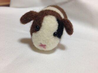 モルモット◯羊毛フェルト◯の画像