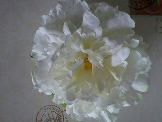 ピオニー ホワイトM  ヘッドドレスの画像