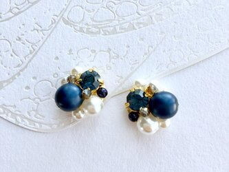 Navy Bijoux Pierceの画像