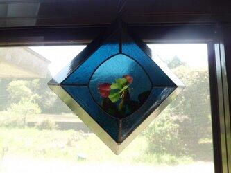 テラリュウム3の画像
