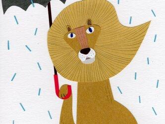 「ライオンと傘と雨」ポストカード2枚セットの画像