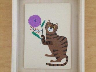 「トラネコと花」ポストカード 2枚セットの画像