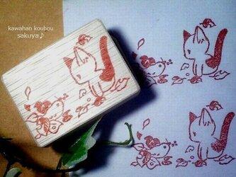 木の実をくわえた小鳥と子猫の画像