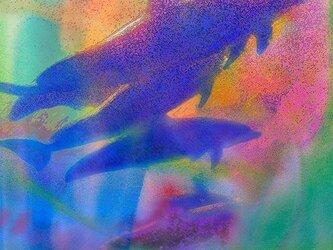 サンクチュアリ   PR-A4-015   A4シートのみ の画像