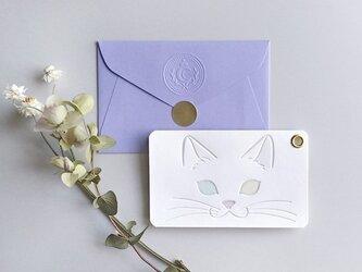 パチカ猫の2枚組メッセージカードの画像