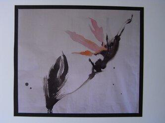 極楽鳥花の画像