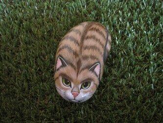 石猫  「野良の矜持」の画像