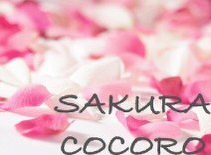 SAKURA COCORO