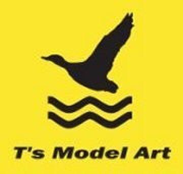 ts-model