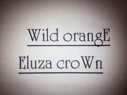 ワイルドオレンジ・エルザクラウン