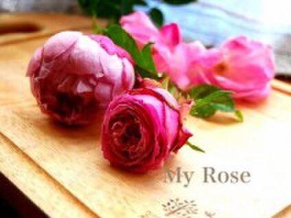 arba rose