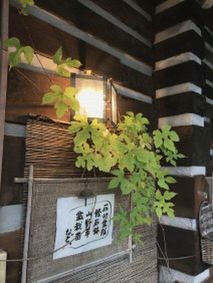 風の呼-kazenoko-