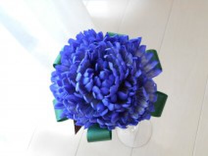 Salon de Fleur Y