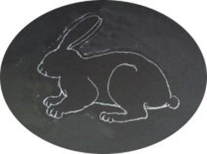black-rabbit