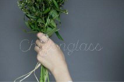 chiffon glass シフォングラス