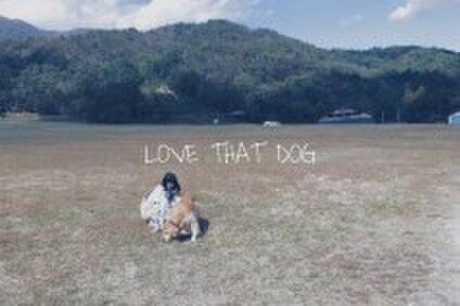 あの犬が好き