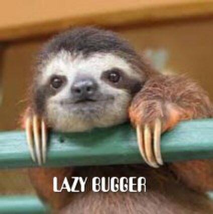 LAZY BUGGER