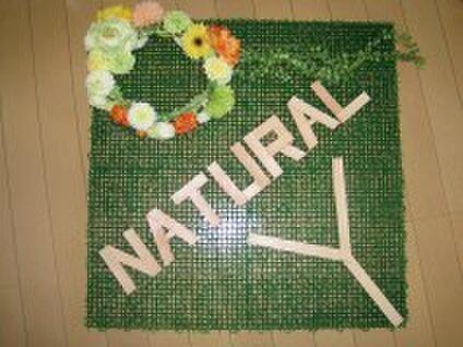 naturalYナチュラルワイ
