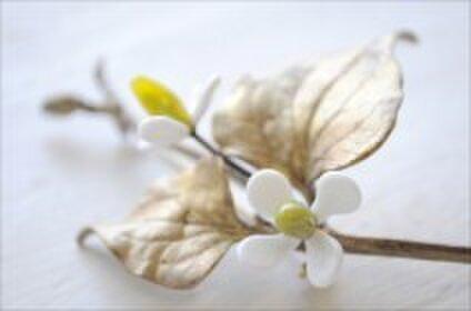 植物アクセサリー サンティエ
