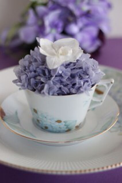 Miu Porcelain