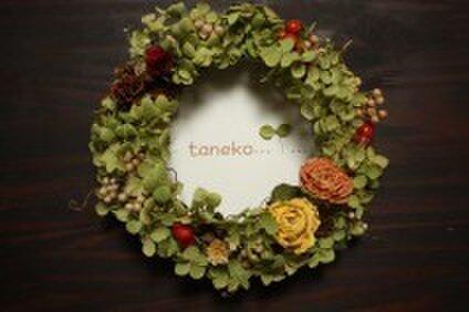 taneko...Y...