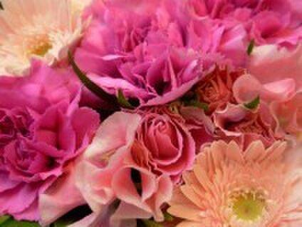 ♥Soap rose♥