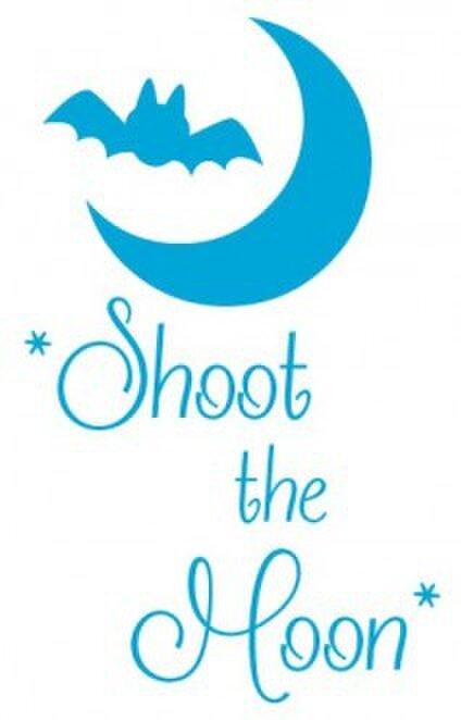 *Shoot the Moon*