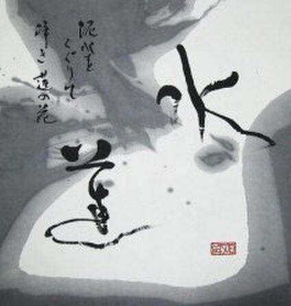 Shography