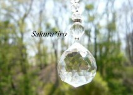 Sakura*iro